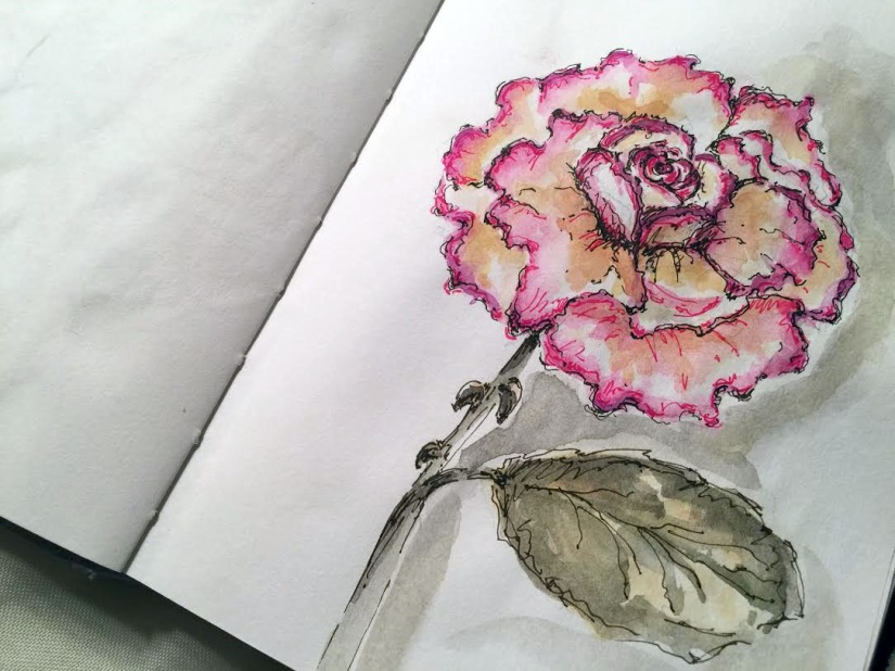 Peace Rose - Original Watercolor ©Carolina Russo