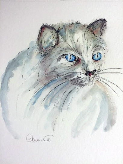 Day #18 - Blue Eyed Cat