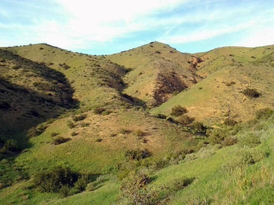 Green Hills after the rain