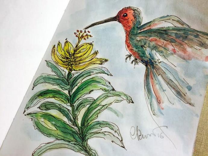 Day #12 -  Hummingbird ©Carolina Russo