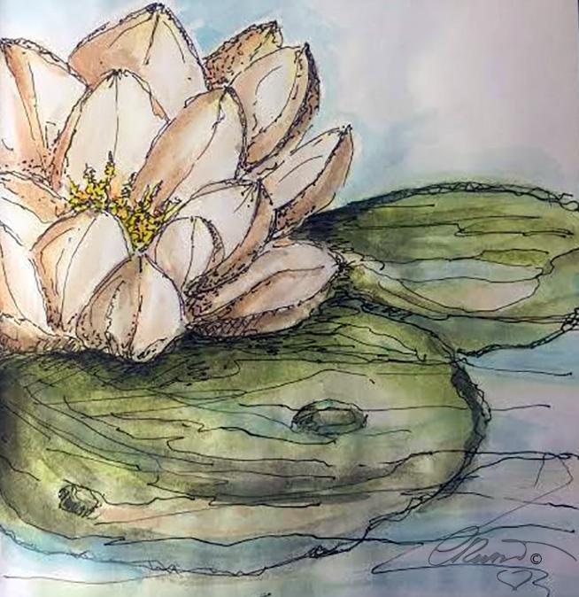 Lotus Flower - Original Watercolor ©Carolina Russo