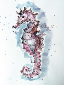 Day #27 - Pink Seahorse