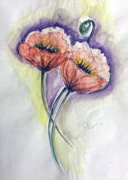 Day #25 - Poppy Flowers
