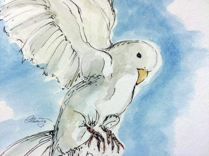White Dove - Original Watercolor © Carolina Russo