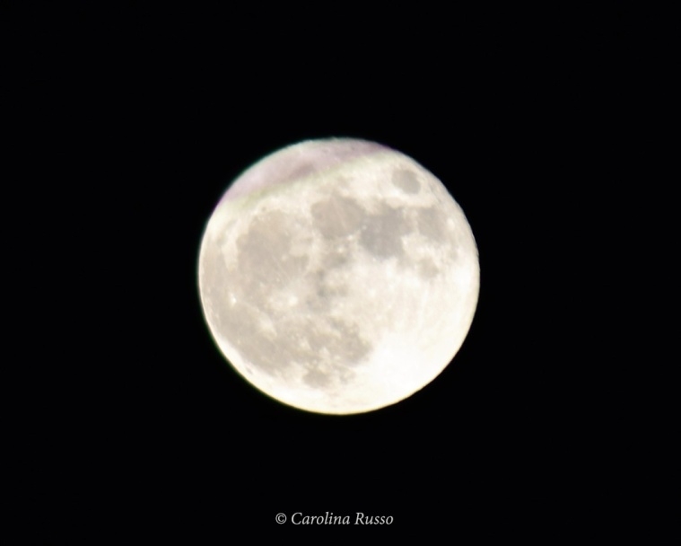 Super Full Moon - Photography ©Carolina Russo