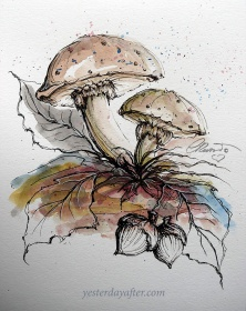 Mushrooms- Original Watercolor ©Carolina Russo