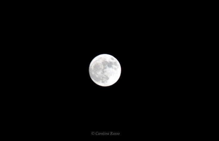 Super Moon - Photography ©Carolina Russo