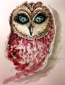 Red Owl - Original watercolor ©Carolina Russo
