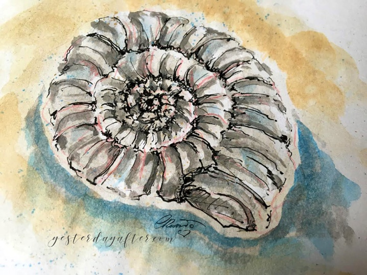 Fossil - Original Watercolor ©CarolinaRusso
