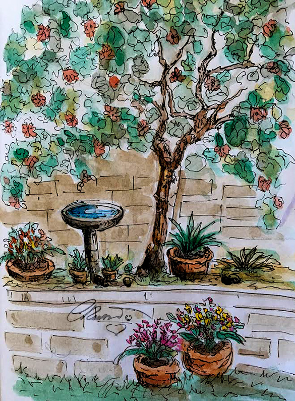 Backyard Gardening - Original Watercolor ©CarolinaRusso
