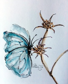 Butterfly - Original Watercolor ©CarolinaRusso