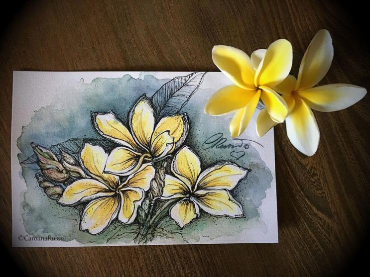 plumeria flower painting challenge yesterdayafter