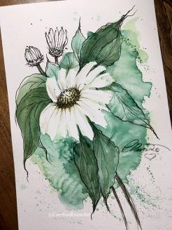 Day 14 - Daisy - Prompt Green Watercolor ©CarolinaRusso